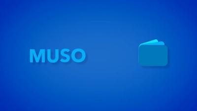 iconnectAudio4+ Multi-Host Audio-Interface - MusoTalk.TV