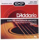 Daddario EXP-42 Resophonic