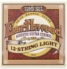 Ernie Ball 2010 Earthwood Bronze