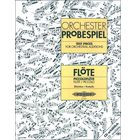 C.F. Peters Orchester Probespiel Flöte