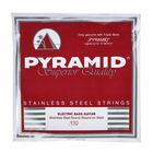 Pyramid 130 Single String bass guitar
