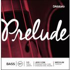Daddario J610-1/2M Prelude Bass 1/2