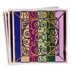 Pirastro Passione Bass 4/4-3/4 heavy