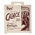 Dogal Mandolin Calace RW92