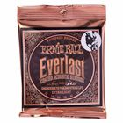 Ernie Ball 2550 Everlast Coated