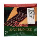 Fisoma F3120D Mandola Strings 80/20