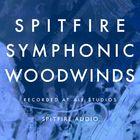 Spitfire Audio Spitfire Symphonic Woodwinds