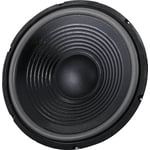 "the box 12"" Speaker for TT305-H"