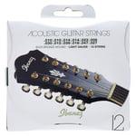 Ibanez IACS12C Acoustic 12 String Set