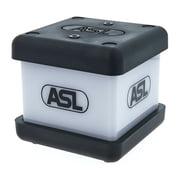 ASL Intercom IS 141