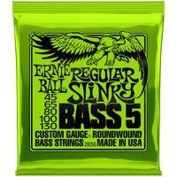 Ernie Ball : 2836 Regular Slinky