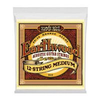 Ernie Ball : 2012 Earthwood Bronze