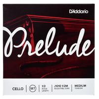 Daddario : J1010-1/2M Prelude Cello 1/2