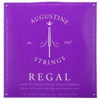 Augustine : Classic Blue Regal