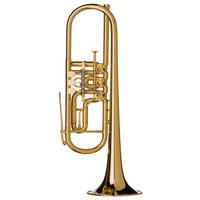 Gerd Dowids : BZ-Series GL72 GP Bb-Trumpet