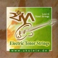 Risa : STRISAST-T String Set