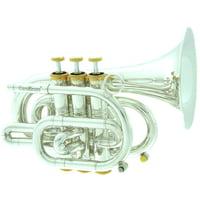 Carol Brass : CPT-3000-GLS-Bb-SG