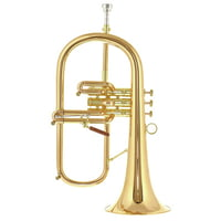 Carol Brass : CFL-8880-GSS-Bb-L