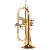 Carol Brass : CFL-6200-GSS-Bb-L