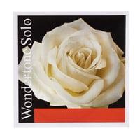 Pirastro : Wondertone E Violin 4/4 Solo