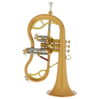 Carol Brass : CFL-7200-GSS-Bb-SL \