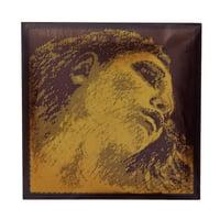 Pirastro : Evah Pirazzi Gold D Violin 4/4