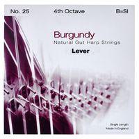 Bow Brand : Burgundy 4th B Gut Str. No.25