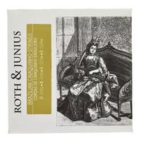 Roth and Junius : Cavaquinho Brasileiro Strings