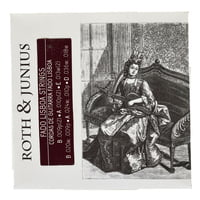 Roth and Junius : Fado Guitar Lisboa Strings