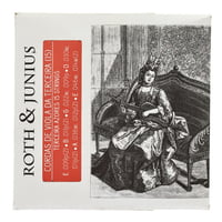 Roth and Junius : Viola da Terceira Strings 15