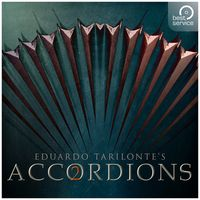 Best Service : Accordions 2 Upgrade
