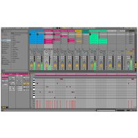 Ableton : Live 10 Standard UPG Intro