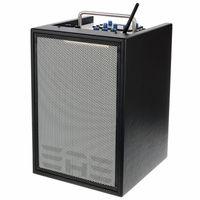 Elite Acoustics : D6-8 Acoustic Amplifier