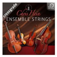 Best Service : Chris Hein Ensemble Strings CG