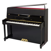 Roth & Junius : RJP 118 E/P Piano