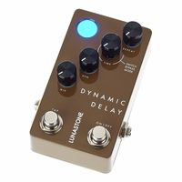 LunaStone : Dynamic Delay