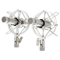 Warm Audio : WA-84 Nickel Stereo-Set