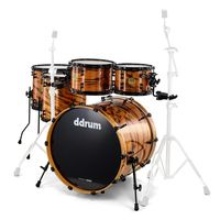 DDrum : Dios Zebrawood ltd. shell set