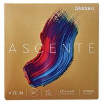 Daddario : A310-4/4M Ascente Violin