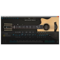 Ample Sound : Ample Guitar Twelve III