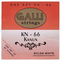 Galli Strings : KN66 Kanun Strings Set