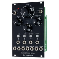Erica Synths : Black Stereo Delay
