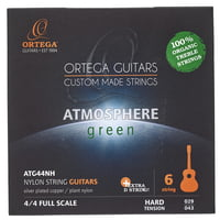 Ortega : ATG44NH Classical Strings