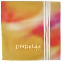 Pirastro : Perpetual Bass D 4/4 - 3/4