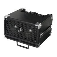 Phil Jones Bass : Bass BG-110 Cub II