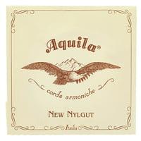 Aquila : 82NNG New Nylgut Lute String