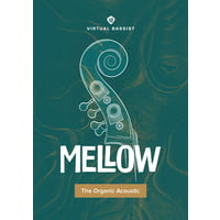 ujam : Virtual Bassist Mellow 2