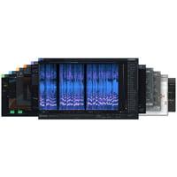 iZotope : RX Post Production Suite 5