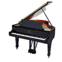 Steinway and Sons : M-170