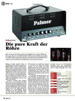 guitar Palmer Drei